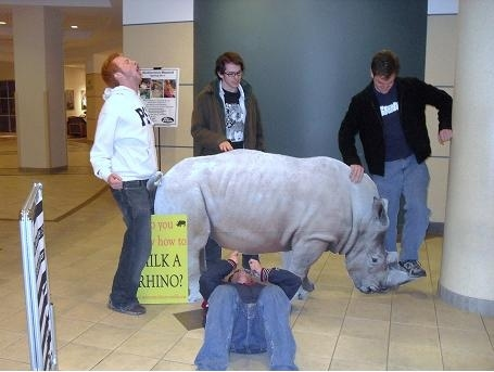 Do You Know How to Milk a Rhino?