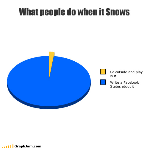 Chart: What People Do When It Snows