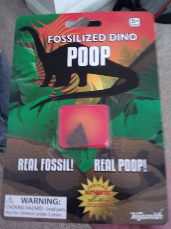 Fossilized Dinosaur Poop!