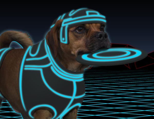 TronDog: He's A User's Best Friend!
