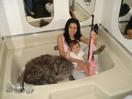 Bath Tub Full Of WTF
