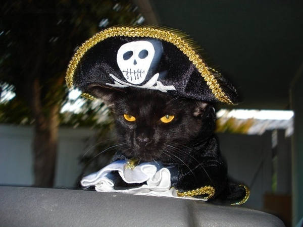 The OG Jack Sparrow