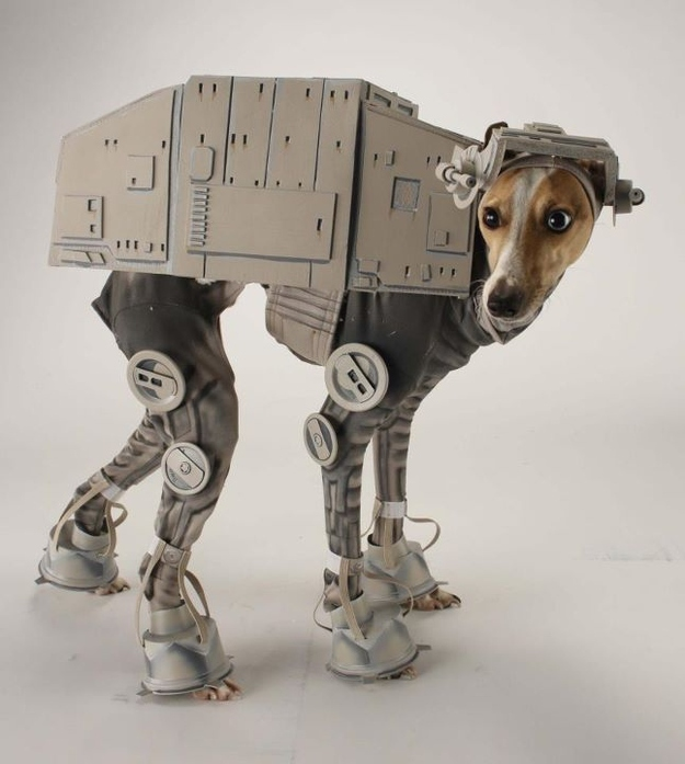 Gadget of the Week: Star Wars AT-AT Dog Costume