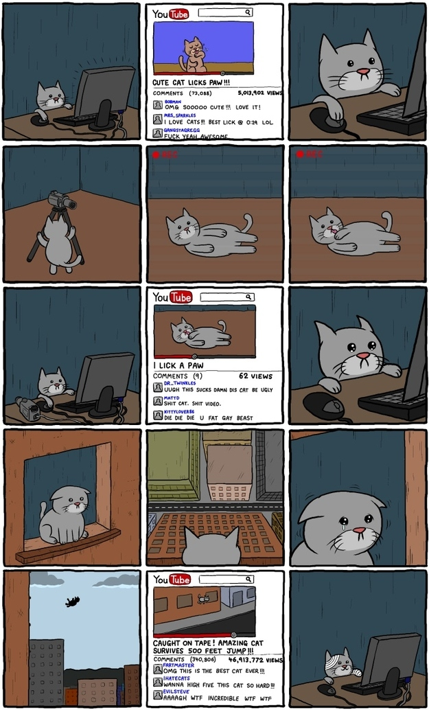 A YouTube Cat Story