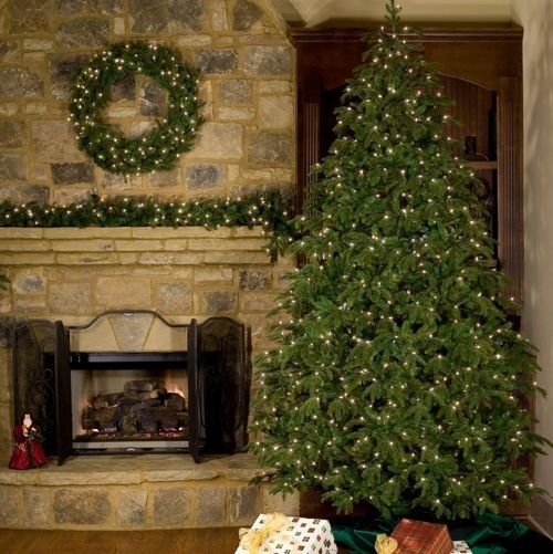 The TRUTH Behind the Christmas Tree TAX – It's Not A Joke