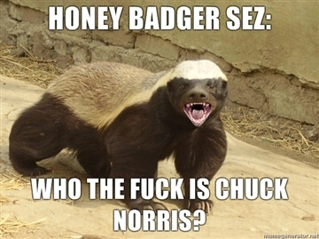 Honey Badger Sez