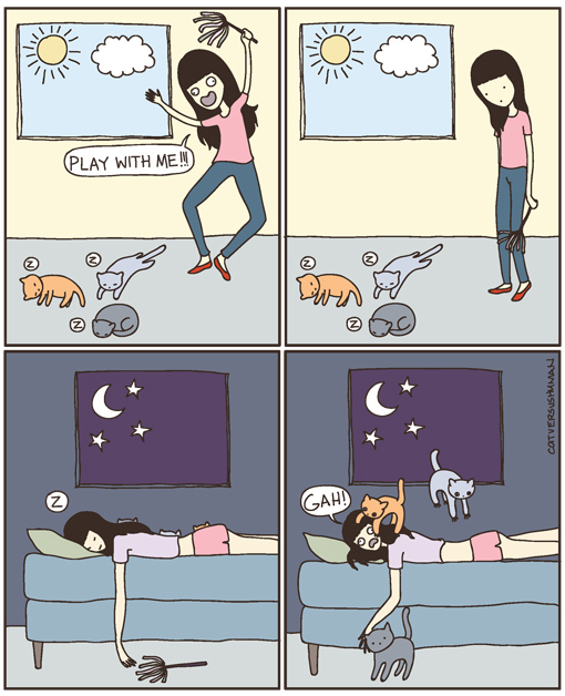Cats:  The Opposite Effect