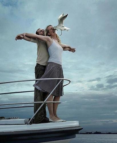 Titanic Seagull Fail