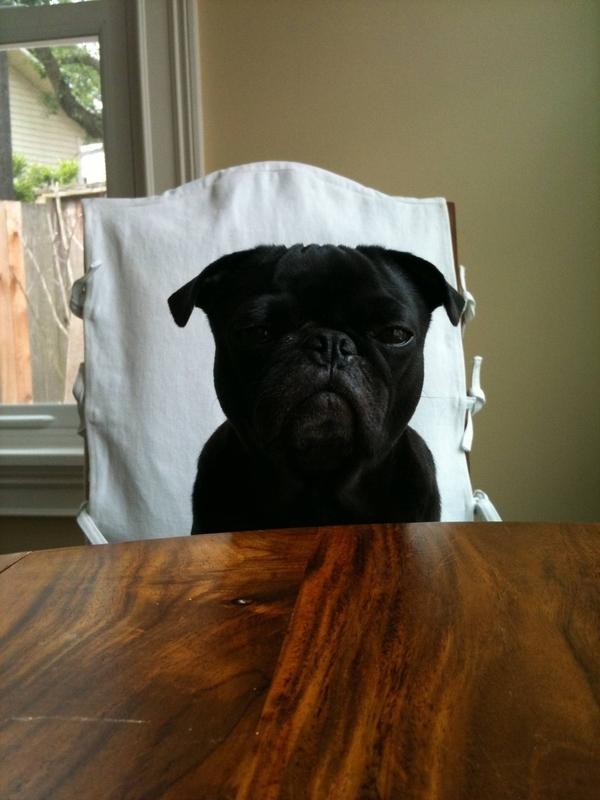 Judgement Dog