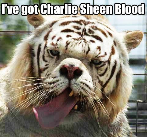 Charlie Sheen Blood