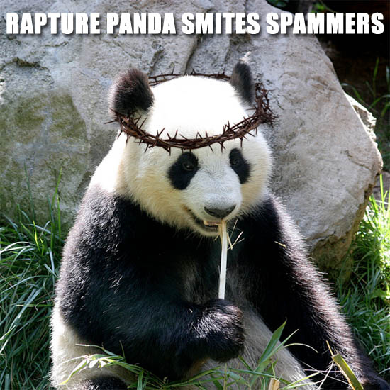 Rapture Panda Smites Spammers!