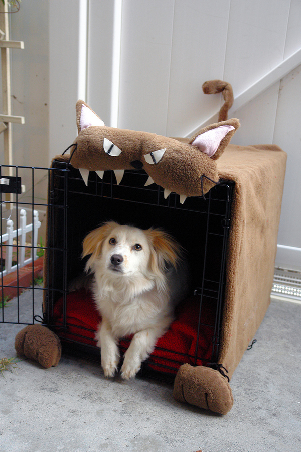 The Very Best Dog House