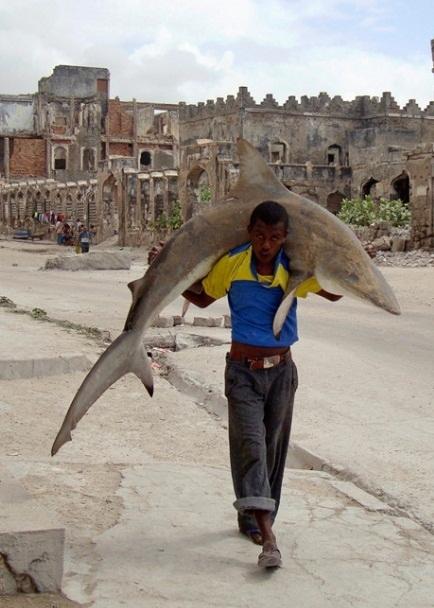Proof: Somalians Are Badasses