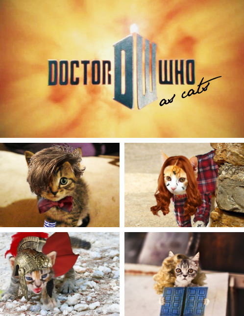 Doctor Who With Cats