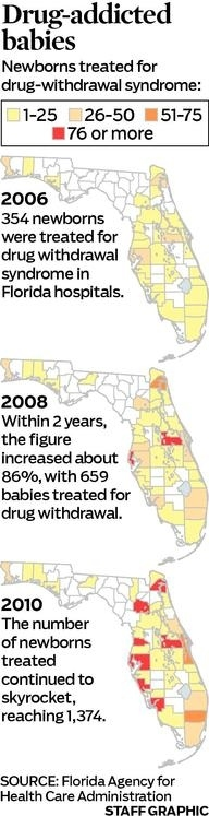 Drug-Addicted Babies In Florida [Infographic]