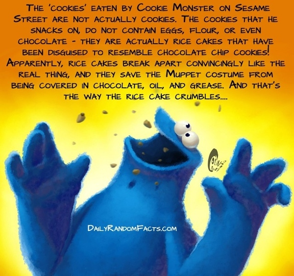 The Truth Behind Cookie Monster