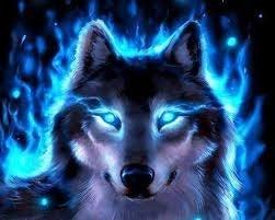 andersontriocdb's avatar