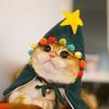 magiccatz