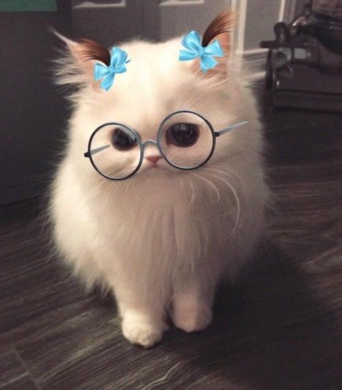 ilikemandms's avatar