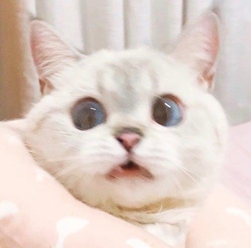 Octubre's avatar