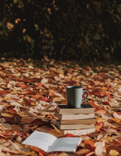 autumndays206's avatar