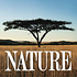 NATURE|PBS
