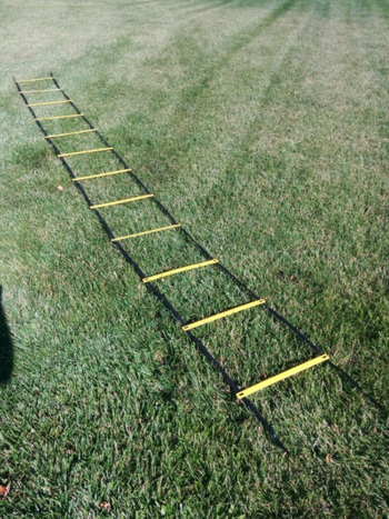 reviewer image of ladder laid out on grass