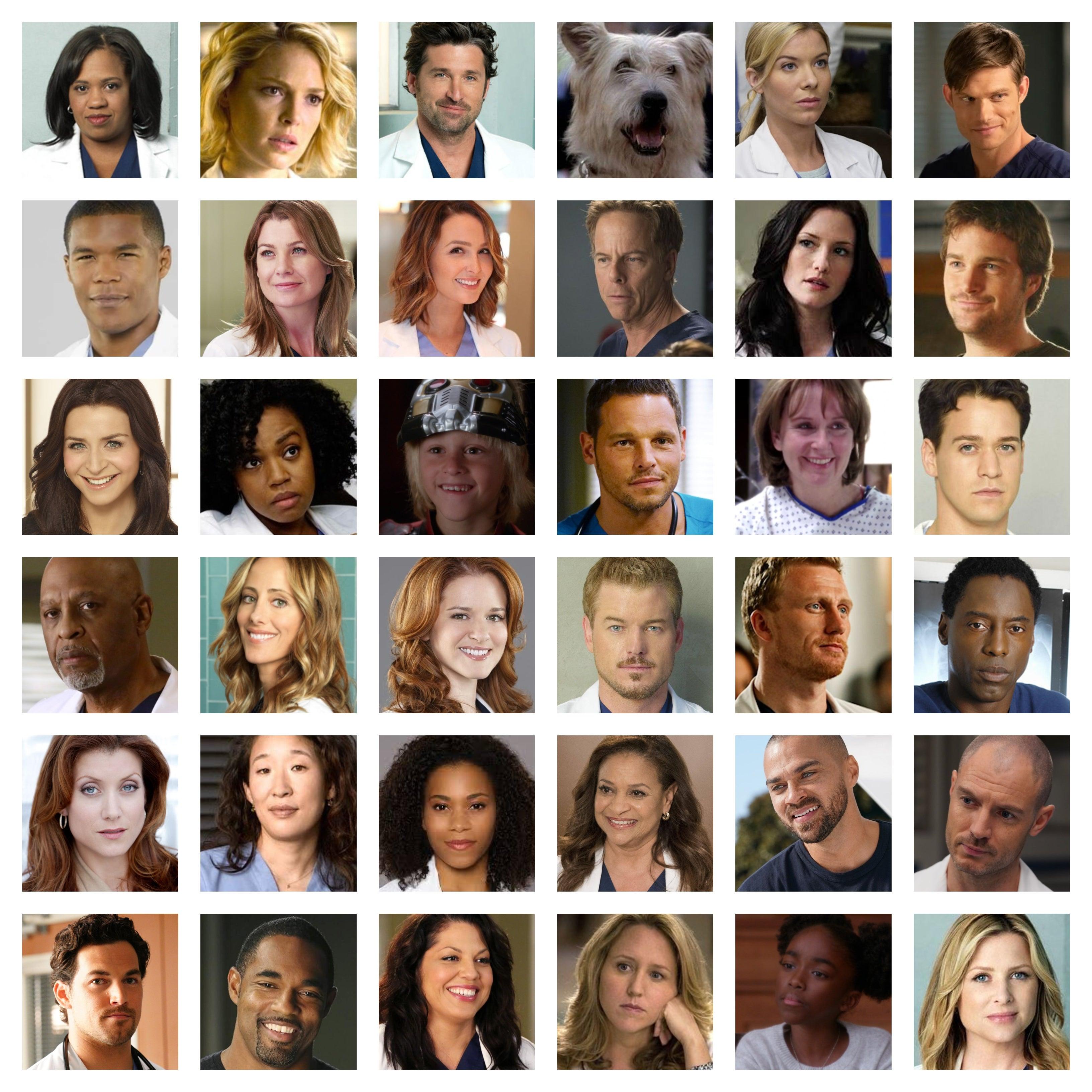 Greys anatomy cast list