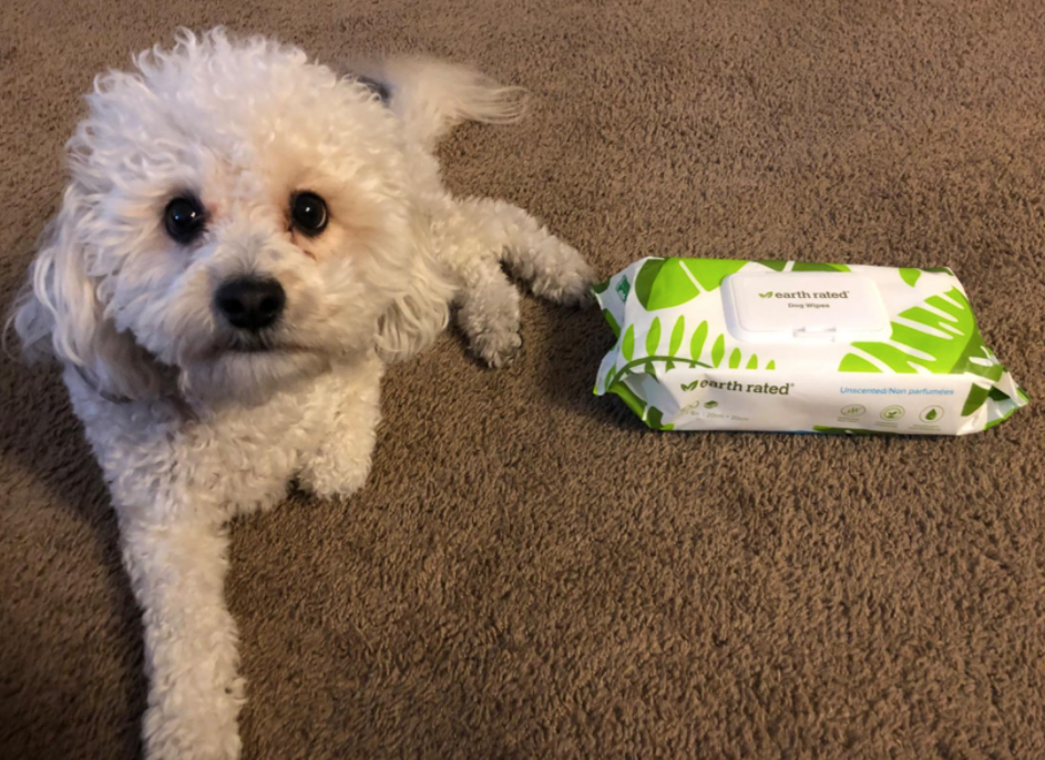 A customer review photo of their dog sitting next to a pack of the wipes