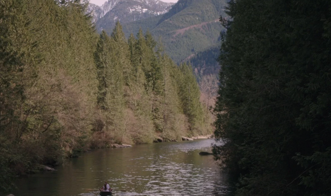 a landscape of evergreen trees along a river with mountains in background