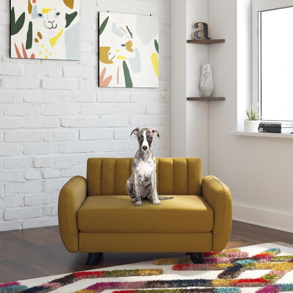 a puppy sitting on a yellow pet couch