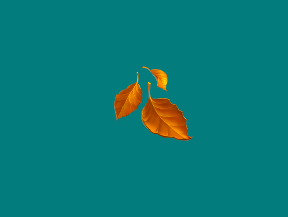Fall leaves drifting off their tree to the ground