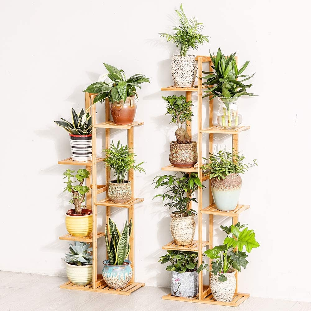 two vertical tiered plant shelves with various container plants on them