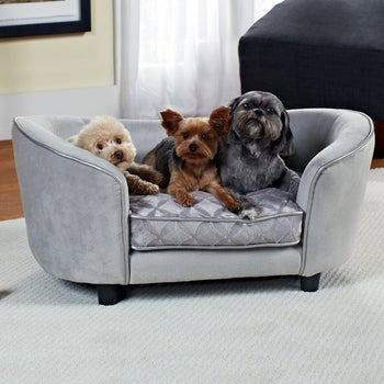 three small dogs on the gray couch-shaped bed