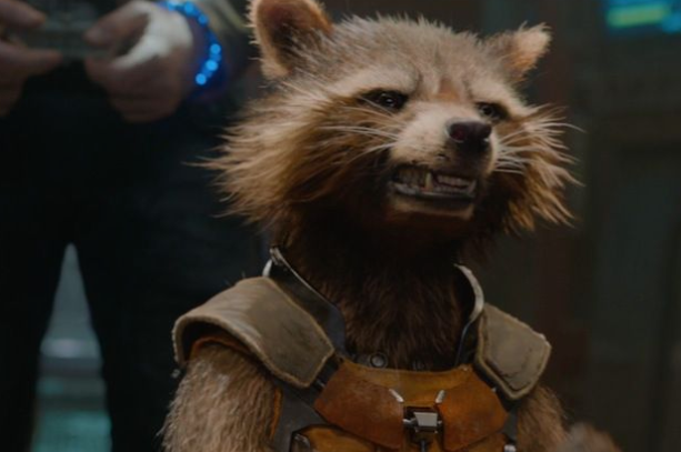 """Bradley Cooper as Rocket Raccon in the movie """"Guardians of the Galaxy."""""""