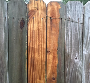 close-up of reviewer's fence with a part of the fence cleaned and vibrant again