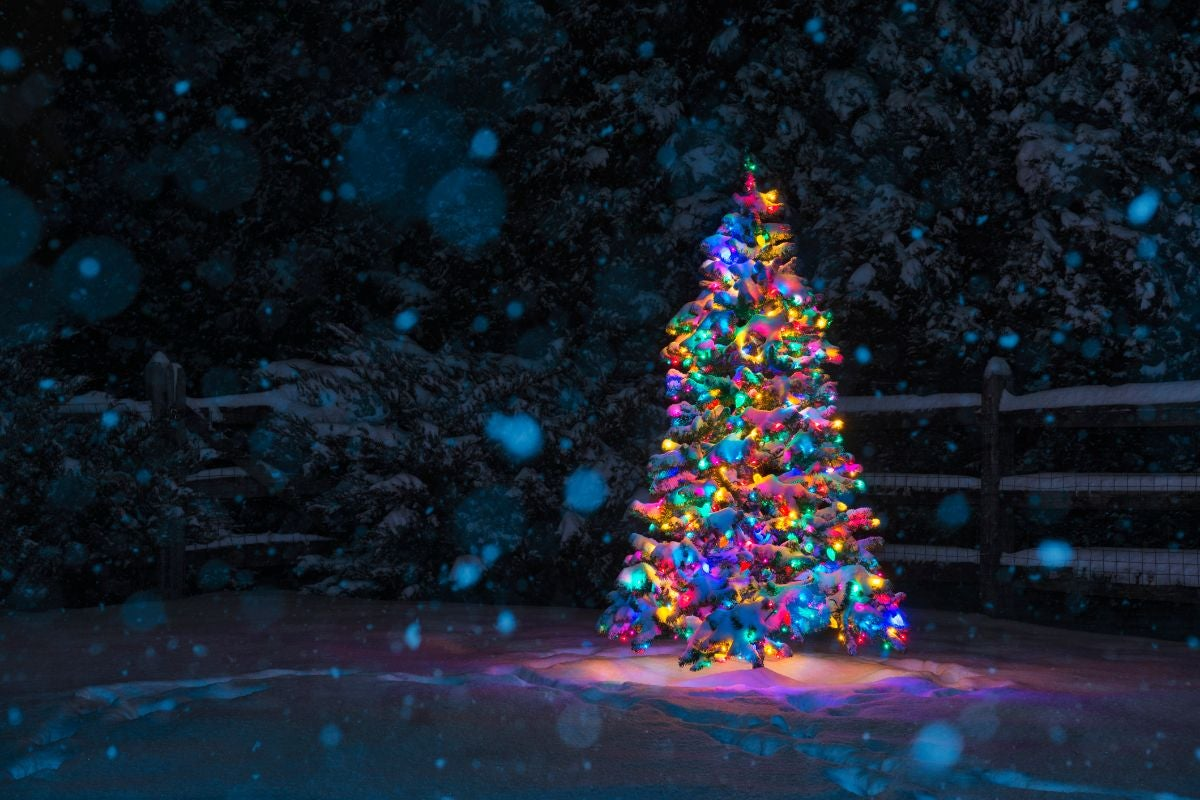A bright Christmas tree outside with snow falling around it