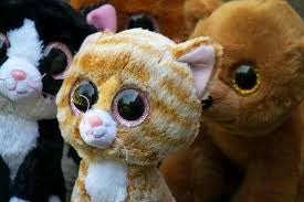 Cat plushie with very large eyes
