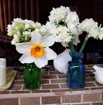 a reviewer photo of a closeup of the green and blue vases with flowers in them