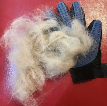 a reviewer photo of the glove covered in a pile of white hair