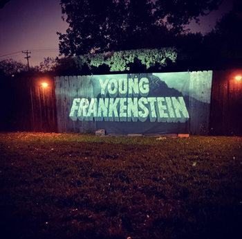 A reviewer projecting young Frankenstein on their fence
