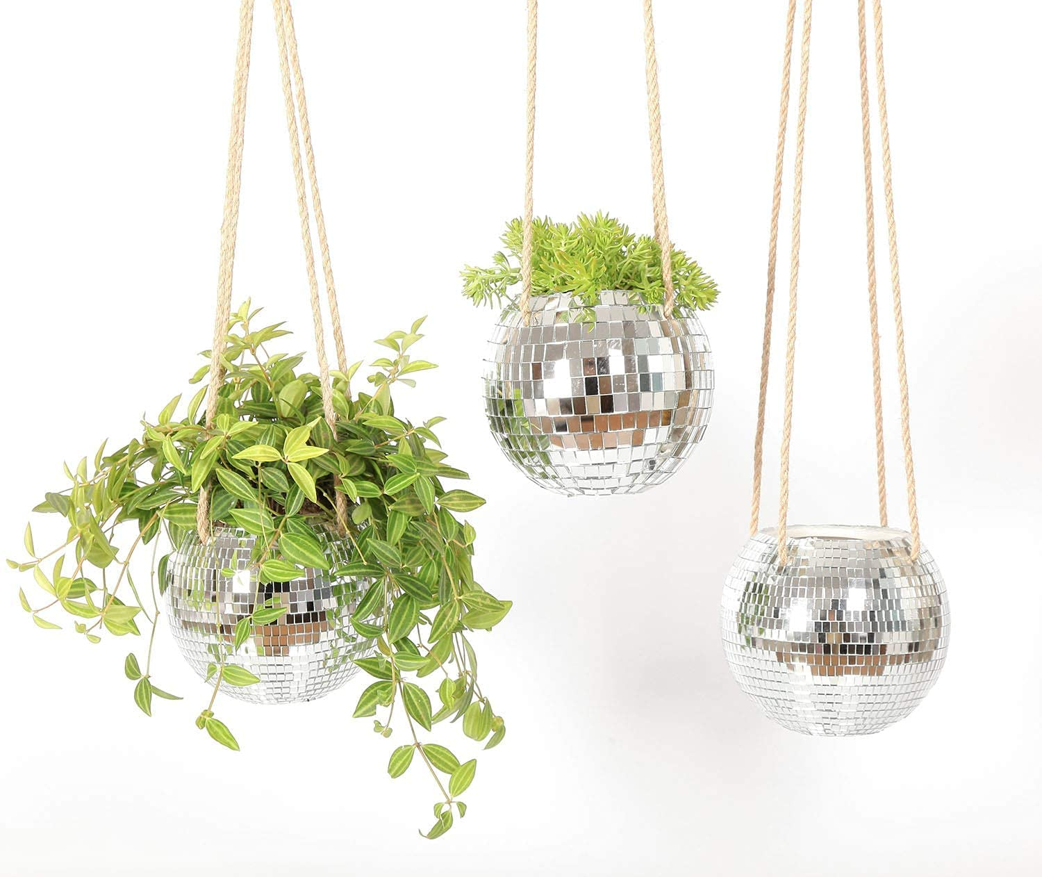 three hanging disco ball planters with twine rope and plants in them