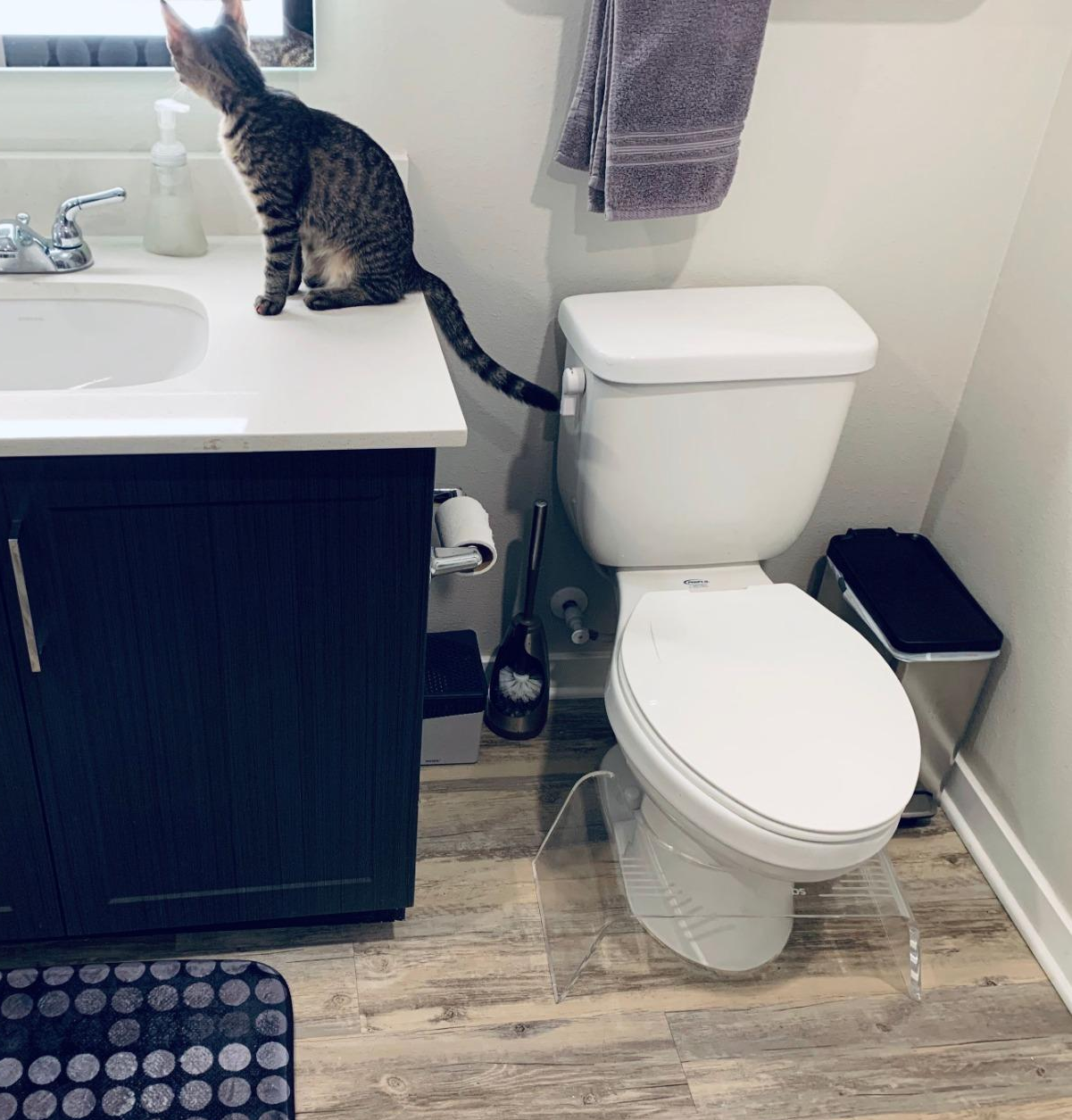 Reviewer photo of the clear acrylic squatty potty under the toilet