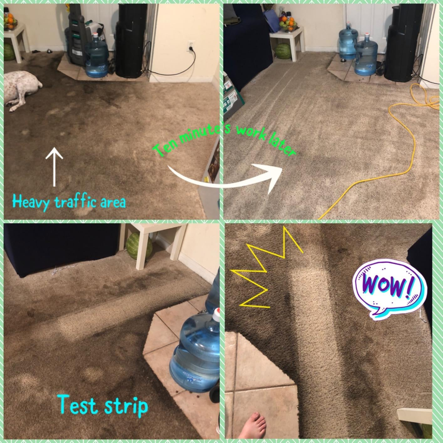 before and after of a reviewer's carpet looking cleaner and brighter after 10 minutes of work, plus a test strip through a dirty patch showing how clean it gets the carpet