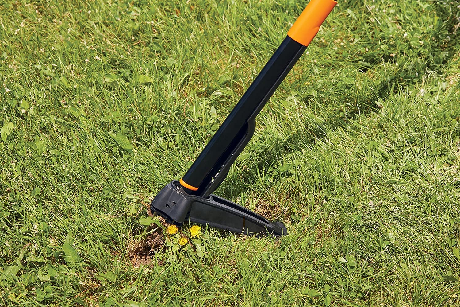 pole-like weeder pulling a weed out of the ground