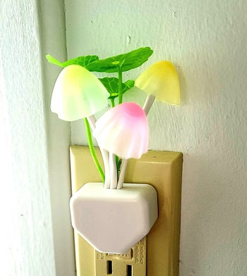 a reviewer's mushroom nightlight plugged into an outlet
