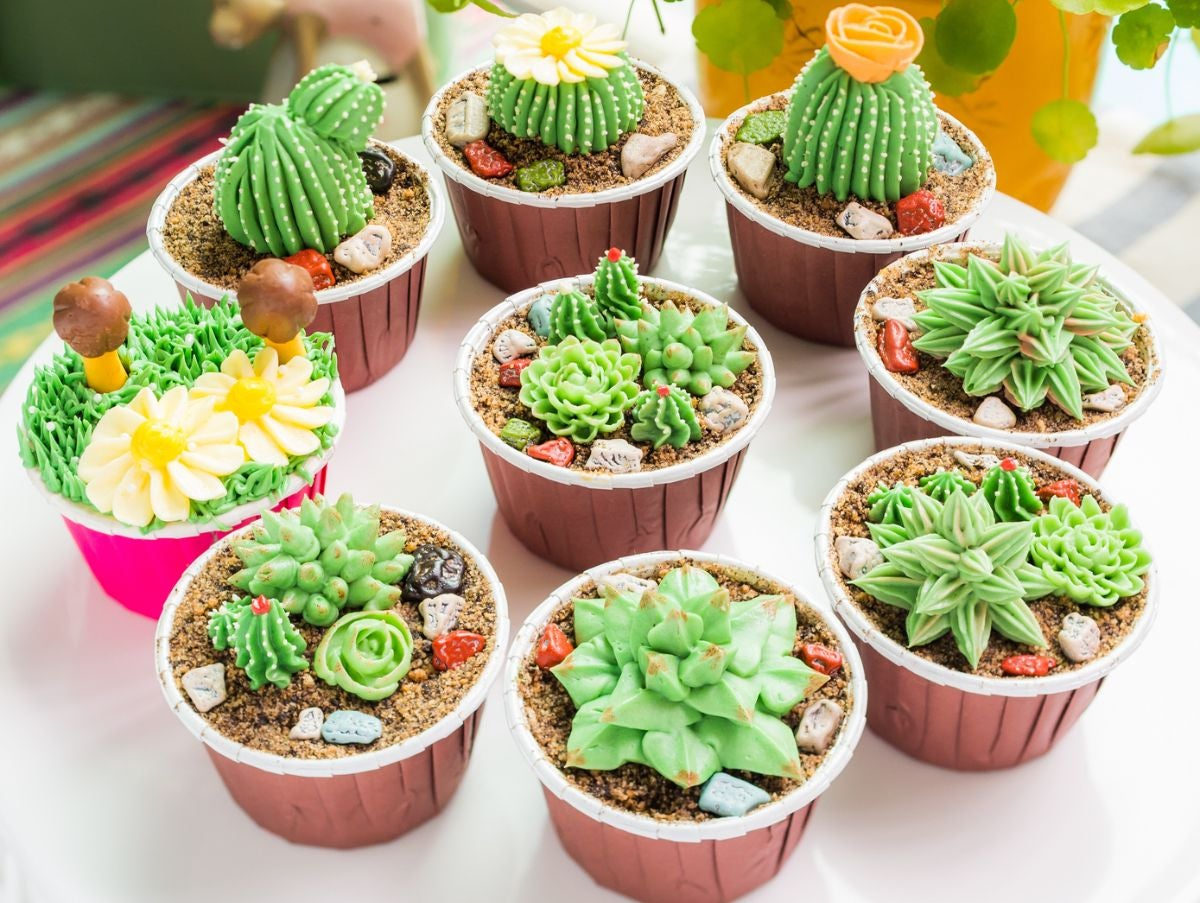 Cupcakes made to look like succulents