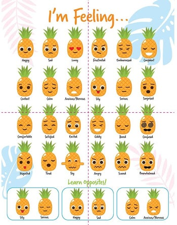 An illustrated chart of the different faces and feelings of a pineapple