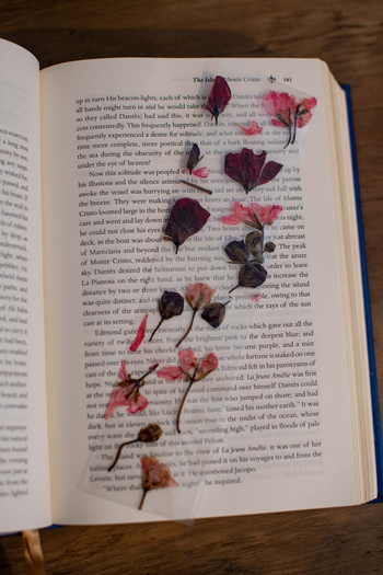a pink and green version in a book