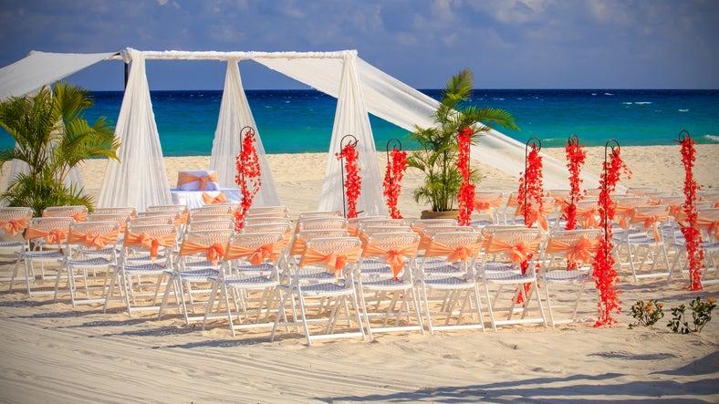 Beach wedding seats and palm trees